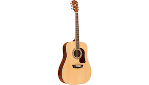 Washburn HD10S Acoustic Guitar